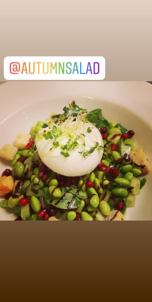 Burrata & Broadbeens Salad